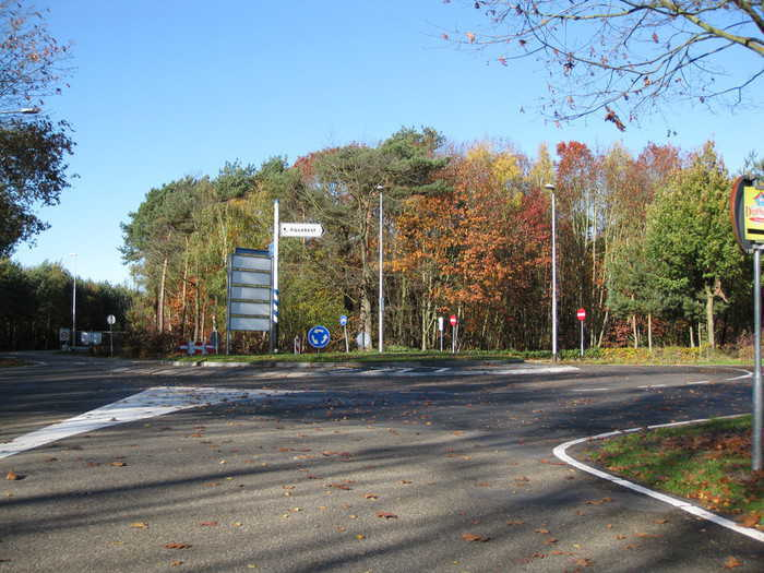 Empty roundabout in autumn